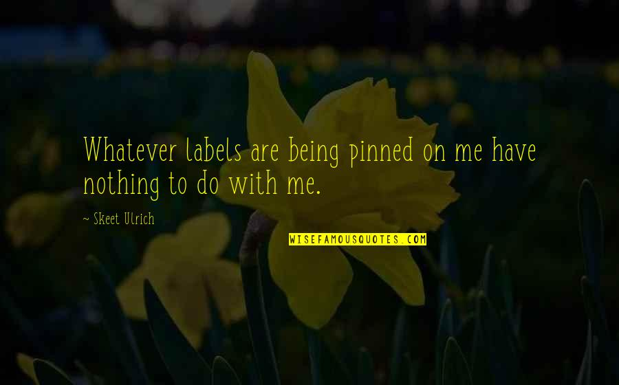 Ulrich Quotes By Skeet Ulrich: Whatever labels are being pinned on me have