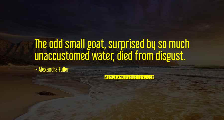 Unaccustomed Quotes By Alexandra Fuller: The odd small goat, surprised by so much