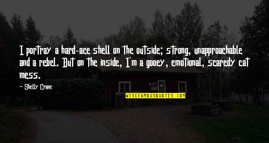 Unapproachable Quotes By Shelly Crane: I portray a hard-ace shell on the outside;