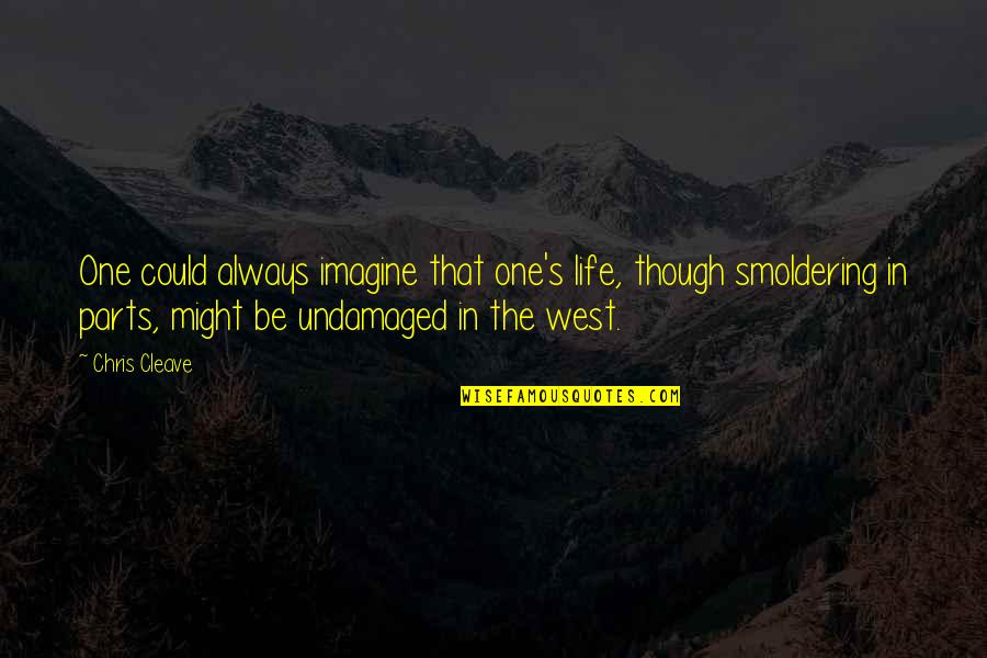 Undamaged Quotes By Chris Cleave: One could always imagine that one's life, though