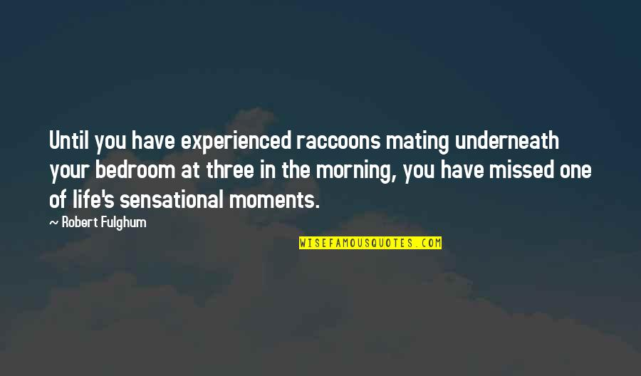 Underneath Quotes By Robert Fulghum: Until you have experienced raccoons mating underneath your