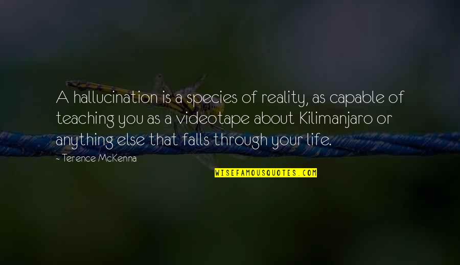 Underself Quotes By Terence McKenna: A hallucination is a species of reality, as