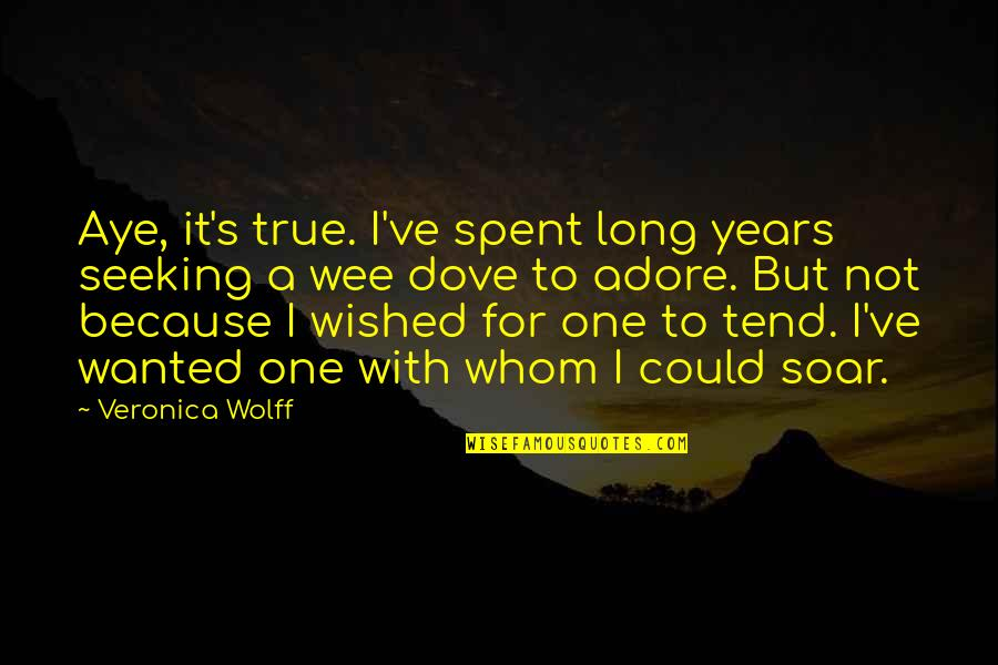Underself Quotes By Veronica Wolff: Aye, it's true. I've spent long years seeking