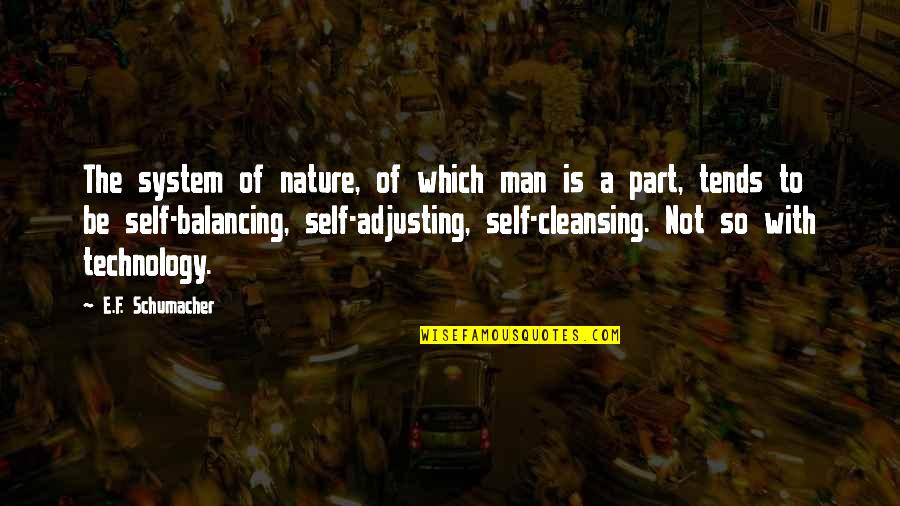 Unethical Human Experimentation Quotes By E.F. Schumacher: The system of nature, of which man is