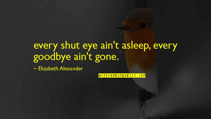 Unexpected Incident Quotes By Elizabeth Alexander: every shut eye ain't asleep, every goodbye ain't