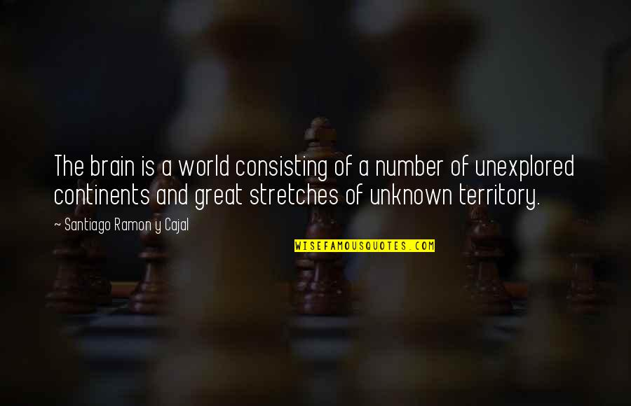 Unexplored Territory Quotes By Santiago Ramon Y Cajal: The brain is a world consisting of a