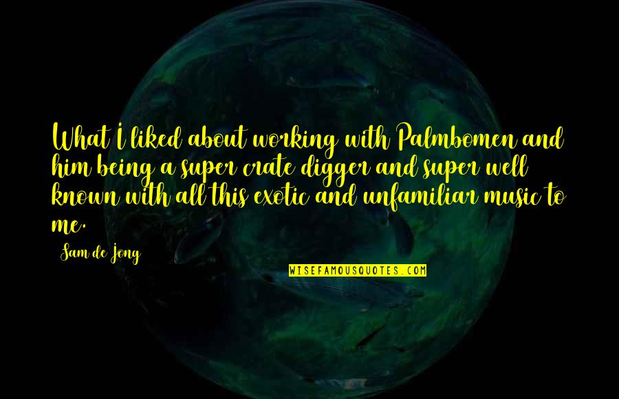 Unfamiliar Quotes By Sam De Jong: What I liked about working with Palmbomen and