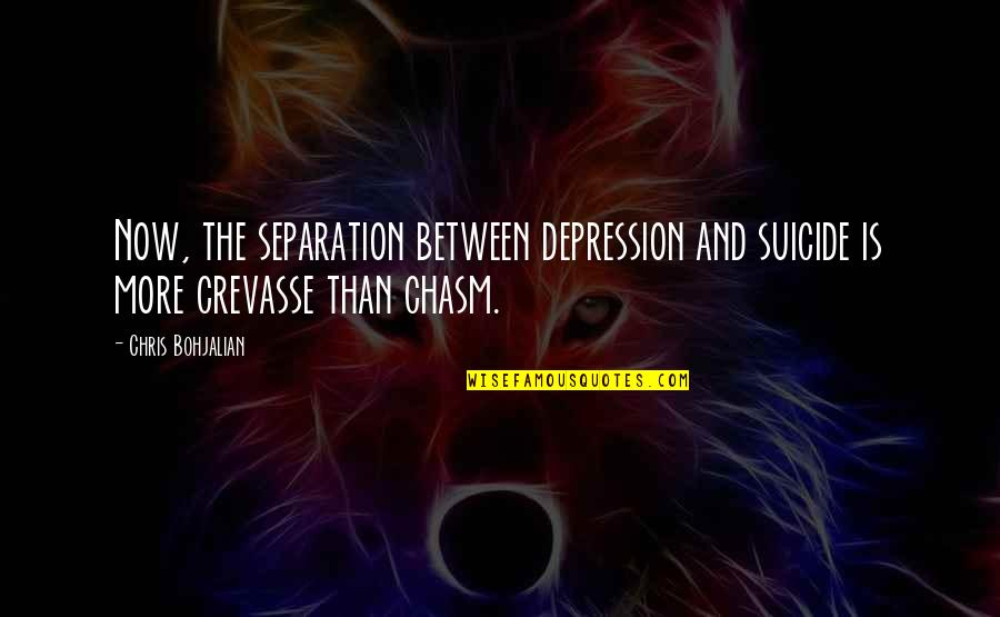 Ungelded Quotes By Chris Bohjalian: Now, the separation between depression and suicide is