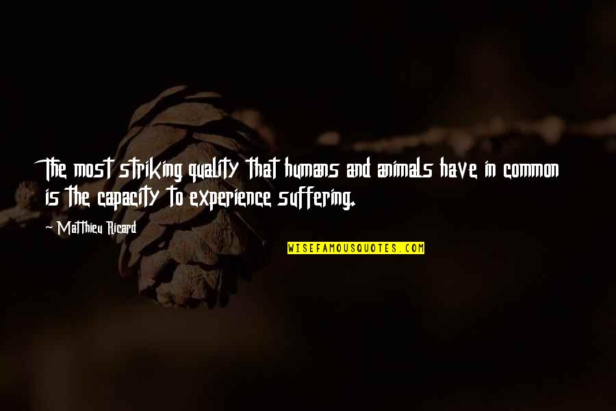 United Healthcare Individual Quotes By Matthieu Ricard: The most striking quality that humans and animals