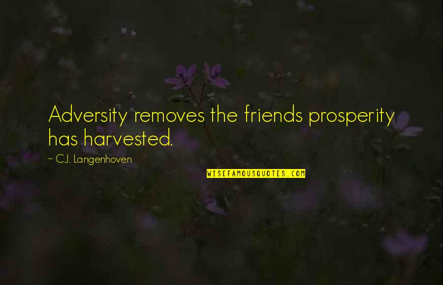 United States Of Tara Charmaine Quotes By C.J. Langenhoven: Adversity removes the friends prosperity has harvested.