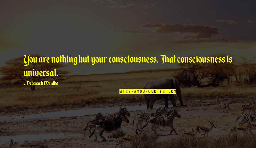 Universal Consciousness Quotes By Debasish Mridha: You are nothing but your consciousness. That consciousness