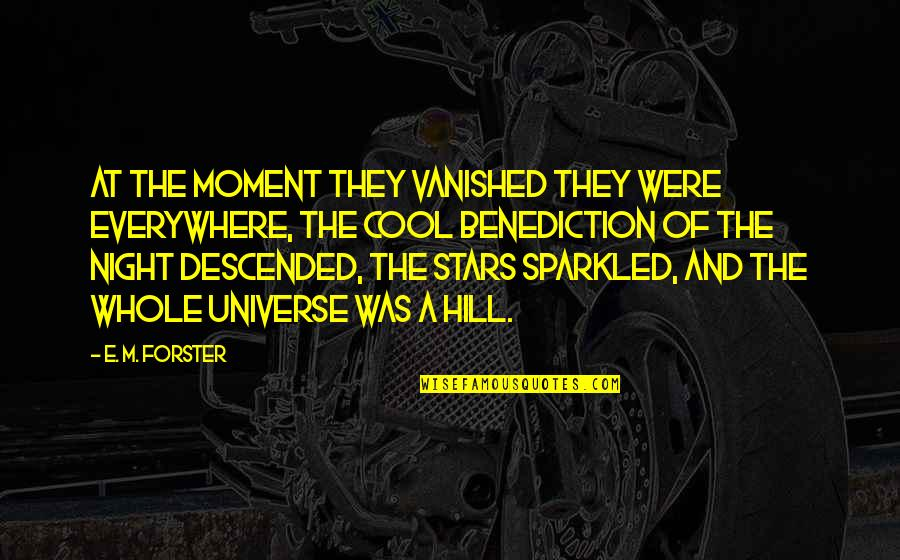 Universe And Stars Quotes By E. M. Forster: At the moment they vanished they were everywhere,