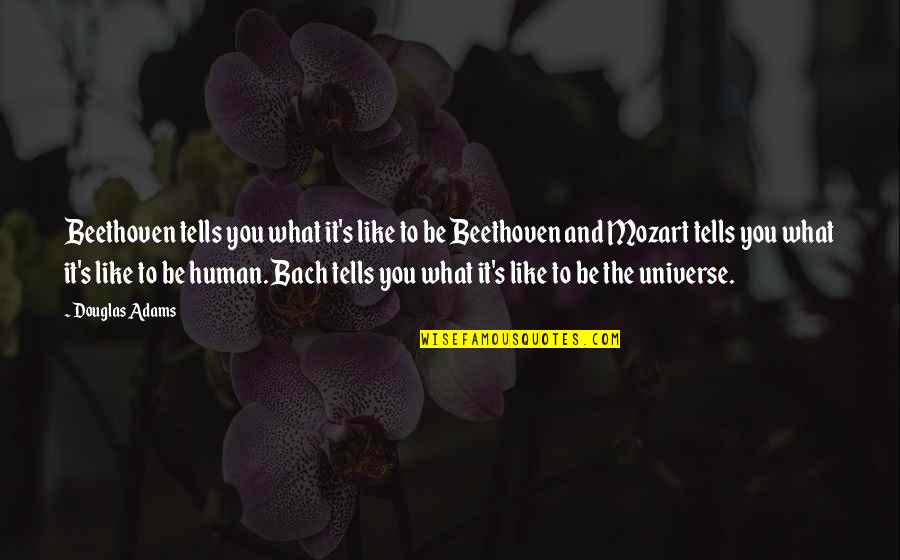 Universe Music Quotes By Douglas Adams: Beethoven tells you what it's like to be
