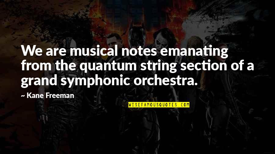Universe Music Quotes By Kane Freeman: We are musical notes emanating from the quantum