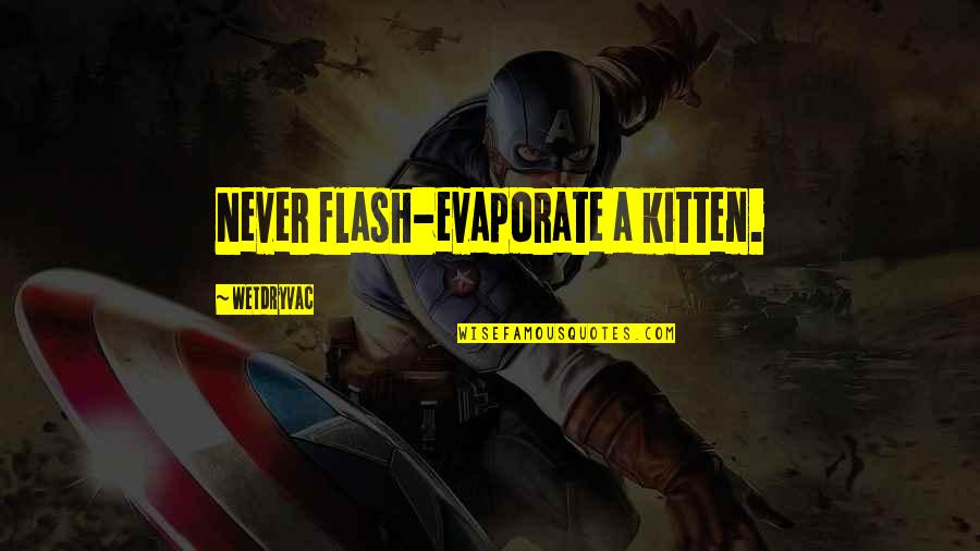 University Of Tennessee Football Quotes By Wetdryvac: Never flash-evaporate a kitten.