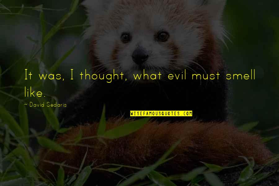 Unlocking Your Heart Quotes By David Sedaris: It was, I thought, what evil must smell