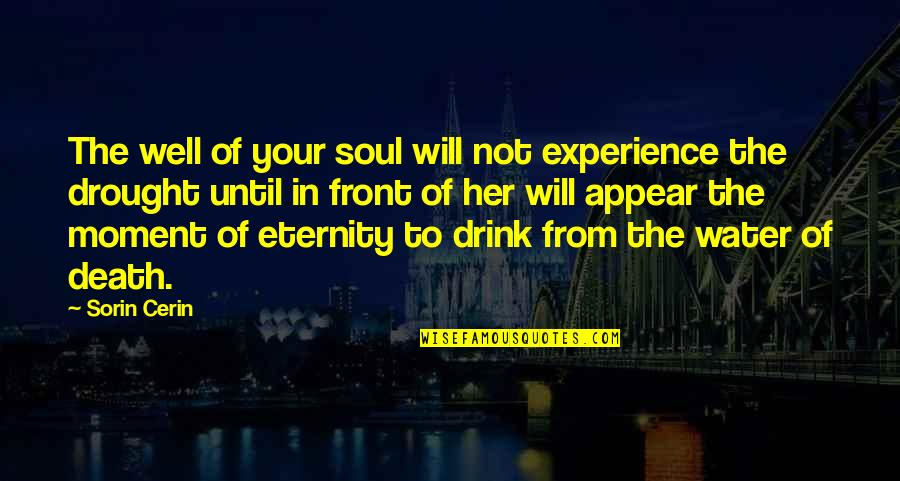 Until Death Quotes By Sorin Cerin: The well of your soul will not experience