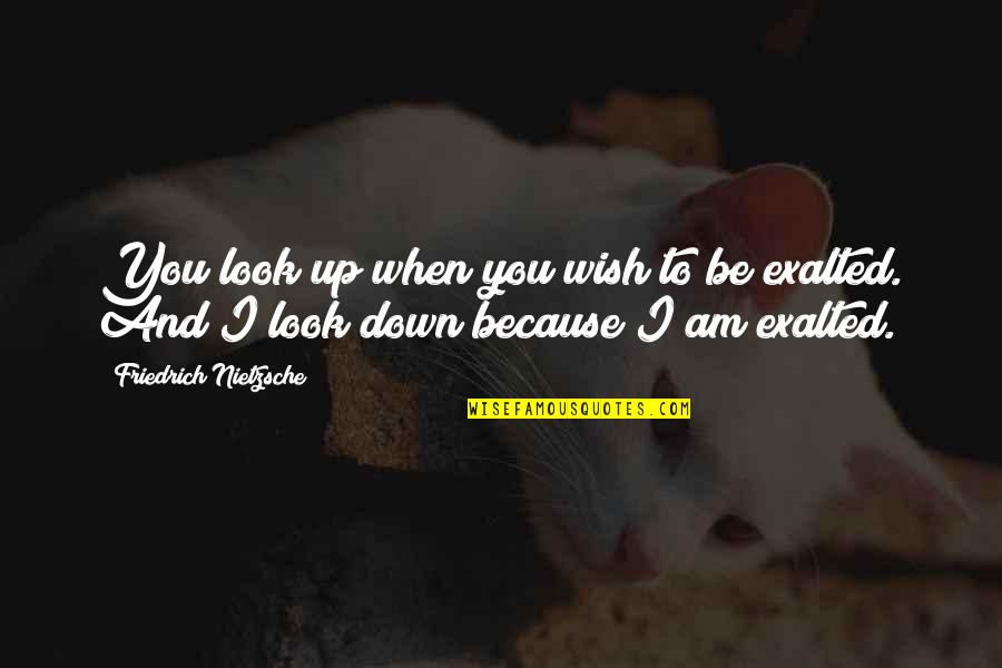 Up And Down Quotes By Friedrich Nietzsche: You look up when you wish to be