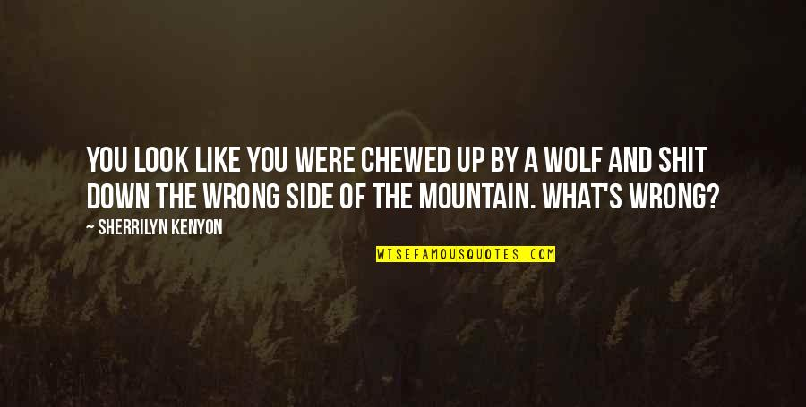 Up And Down Quotes By Sherrilyn Kenyon: You look like you were chewed up by