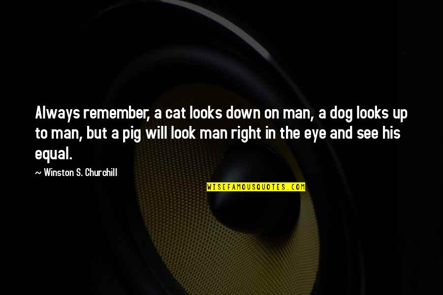 Up And Down Quotes By Winston S. Churchill: Always remember, a cat looks down on man,