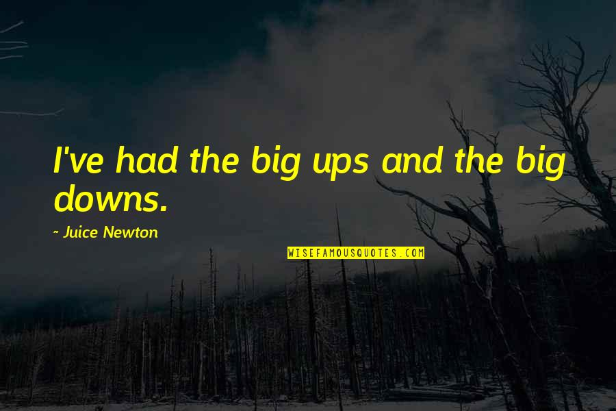 Ups Downs Quotes By Juice Newton: I've had the big ups and the big