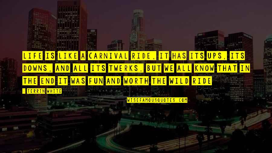 Ups N Downs In Life Quotes By Terrin White: Life Is Like A Carnival Ride, It Has