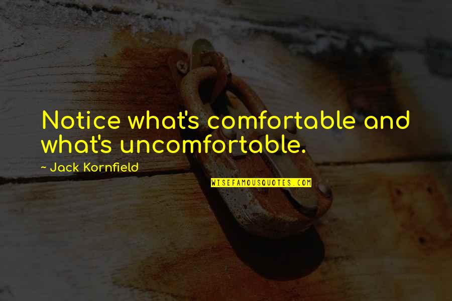 Upsetting Relationship Quotes By Jack Kornfield: Notice what's comfortable and what's uncomfortable.