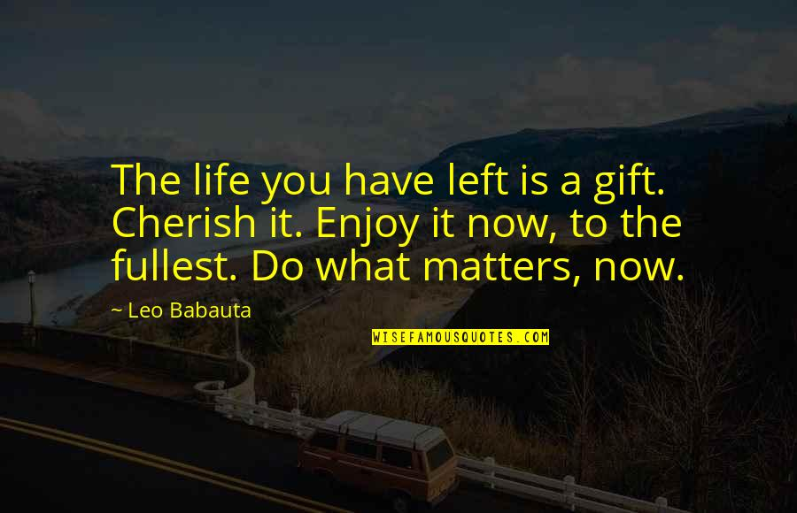 Urgency Quotes By Leo Babauta: The life you have left is a gift.