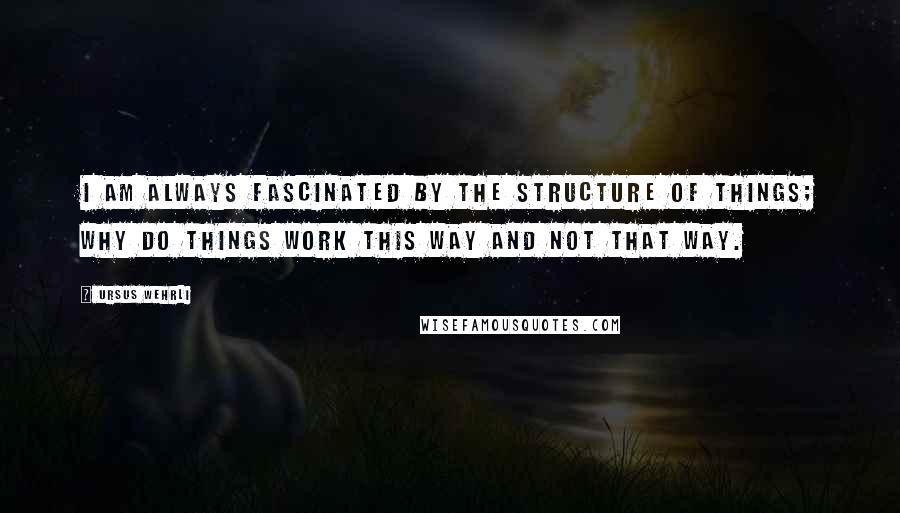 Ursus Wehrli quotes: I am always fascinated by the structure of things; why do things work this way and not that way.