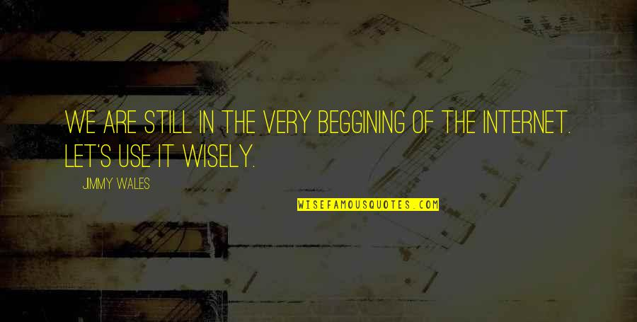 Use It Wisely Quotes By Jimmy Wales: We are still in the very beggining of