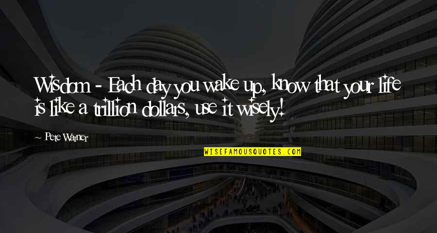 Use It Wisely Quotes By Pete Warner: Wisdom - Each day you wake up, know