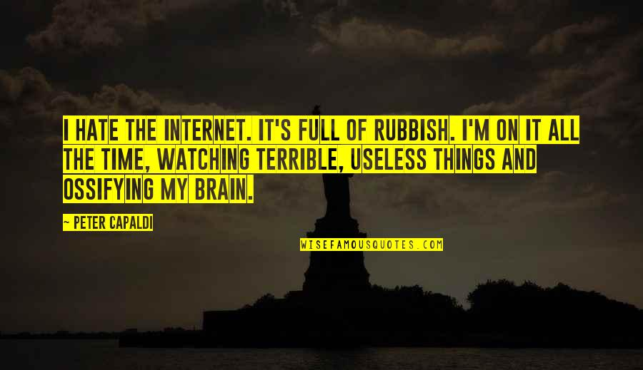 Useless Things Quotes By Peter Capaldi: I hate the Internet. It's full of rubbish.