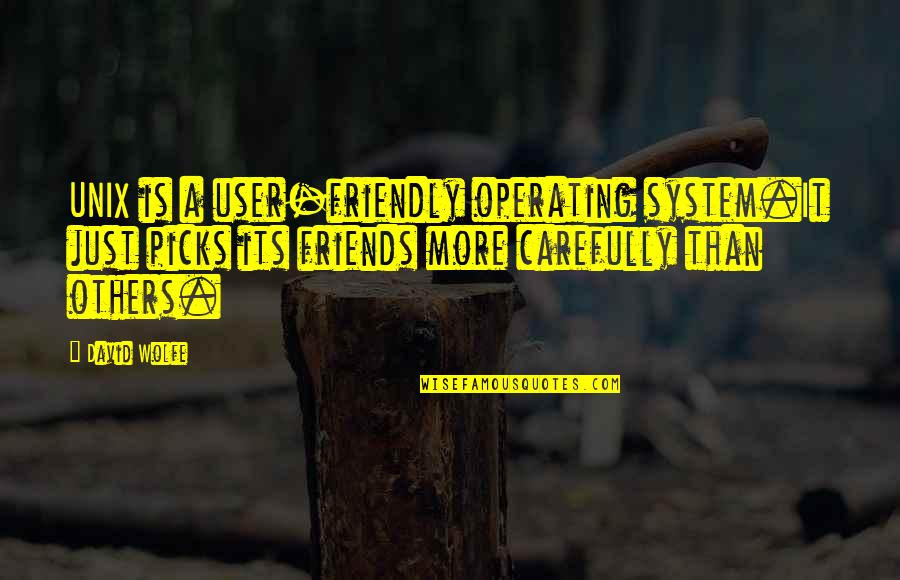 User Friendly Quotes By David Wolfe: UNIX is a user-friendly operating system.It just picks