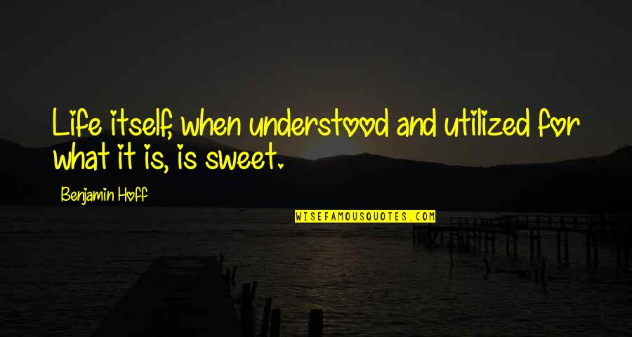 Utilized Quotes By Benjamin Hoff: Life itself, when understood and utilized for what