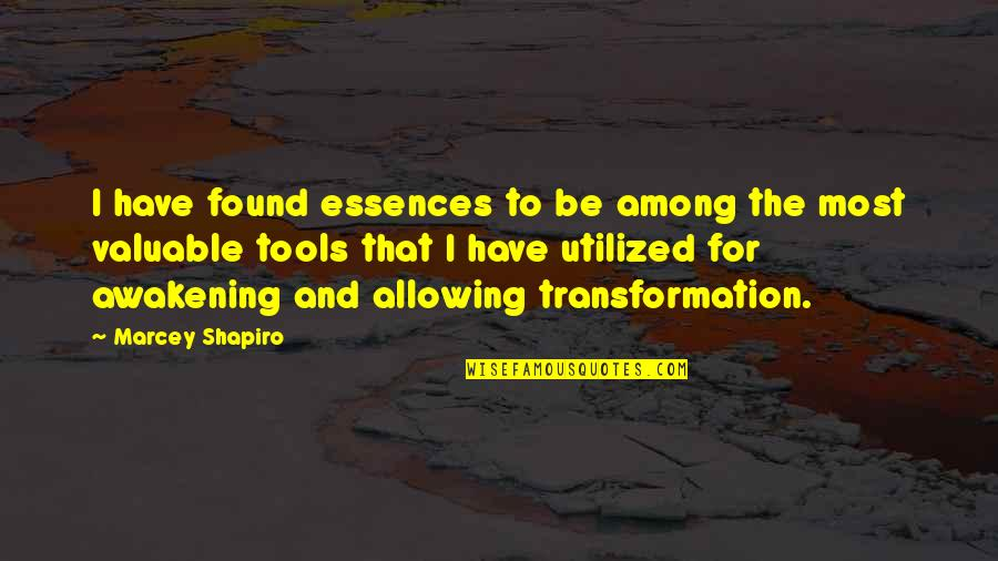 Utilized Quotes By Marcey Shapiro: I have found essences to be among the