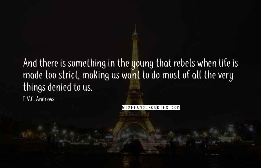V.C. Andrews quotes: And there is something in the young that rebels when life is made too strict, making us want to do most of all the very things denied to us.