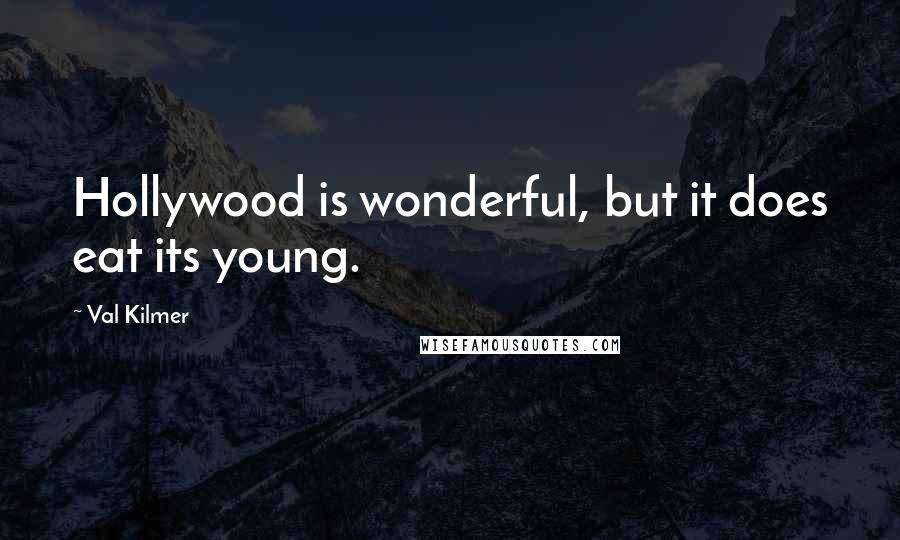 Val Kilmer quotes: Hollywood is wonderful, but it does eat its young.