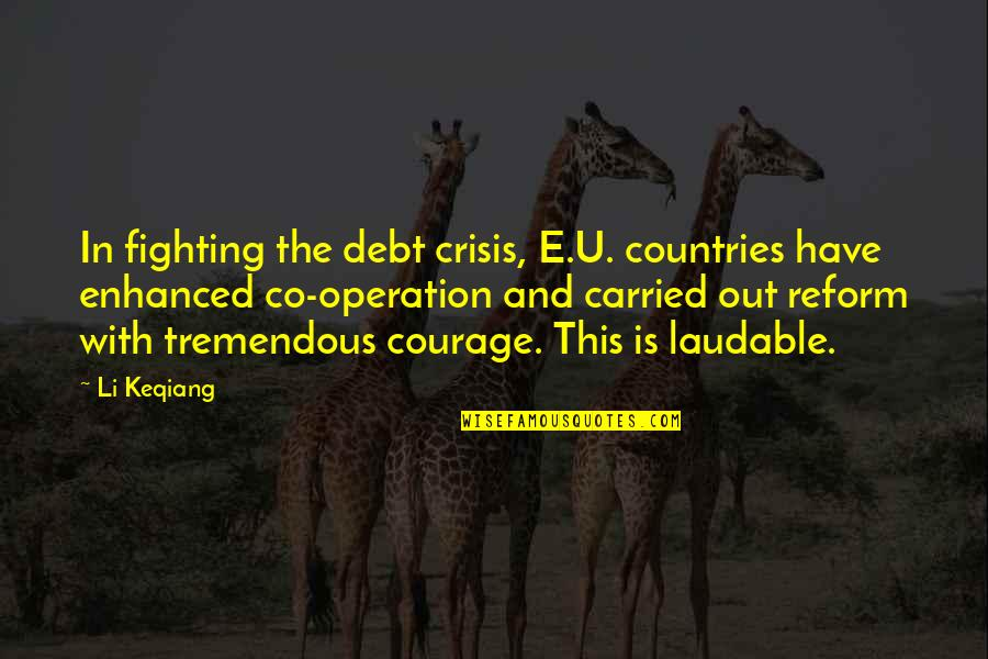 Value Based Purchasing Quotes By Li Keqiang: In fighting the debt crisis, E.U. countries have