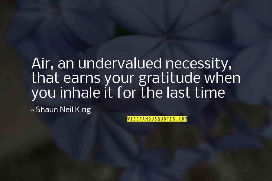 Value Your Life Quotes By Shaun Neil King: Air, an undervalued necessity, that earns your gratitude