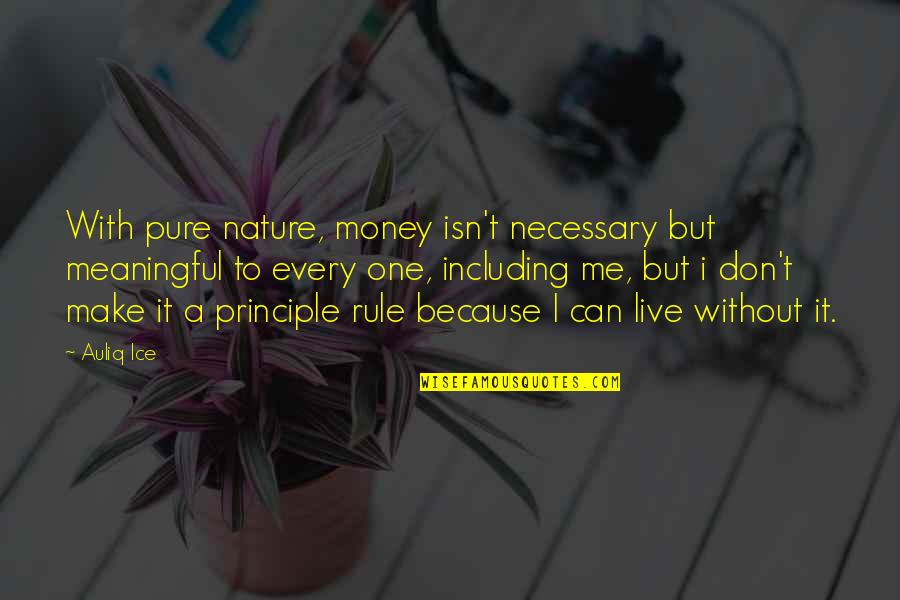 Values In Life Quotes By Auliq Ice: With pure nature, money isn't necessary but meaningful