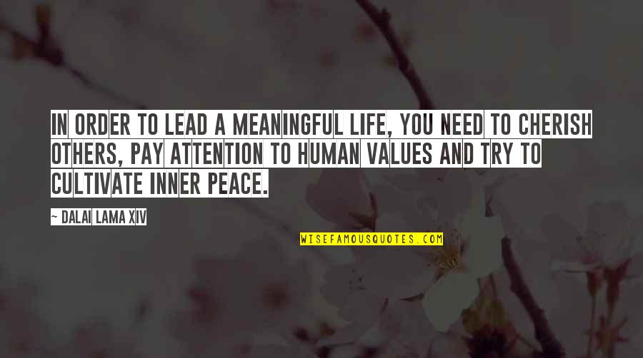 Values In Life Quotes By Dalai Lama XIV: In order to lead a meaningful life, you