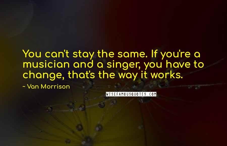 Van Morrison quotes: You can't stay the same. If you're a musician and a singer, you have to change, that's the way it works.