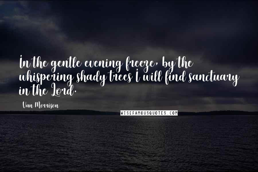 Van Morrison quotes: In the gentle evening freeze, by the whispering shady trees I will find sanctuary in the Lord.