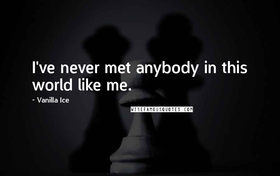 Vanilla Ice quotes: I've never met anybody in this world like me.
