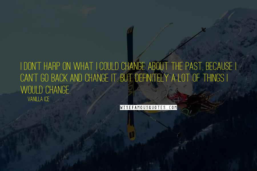 Vanilla Ice quotes: I don't harp on what I could change about the past, because I can't go back and change it. But definitely a lot of things I would change.