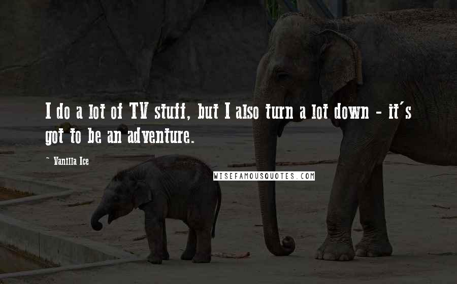 Vanilla Ice quotes: I do a lot of TV stuff, but I also turn a lot down - it's got to be an adventure.
