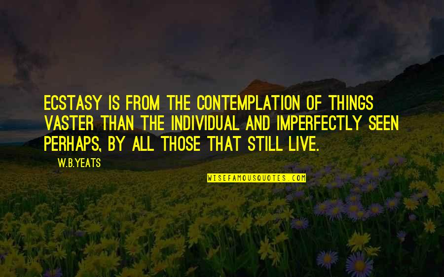 Vaster Quotes By W.B.Yeats: Ecstasy is from the contemplation of things vaster