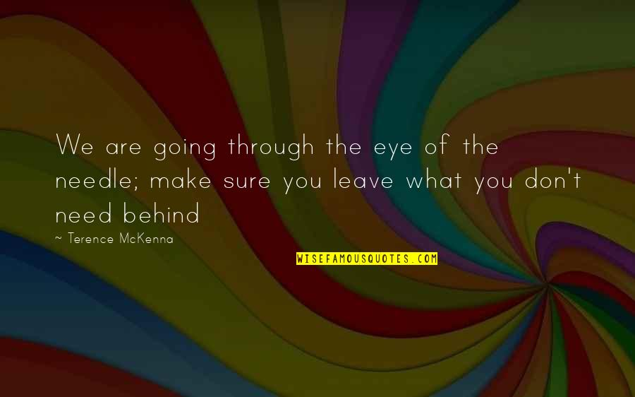 Vector Physics Quotes By Terence McKenna: We are going through the eye of the