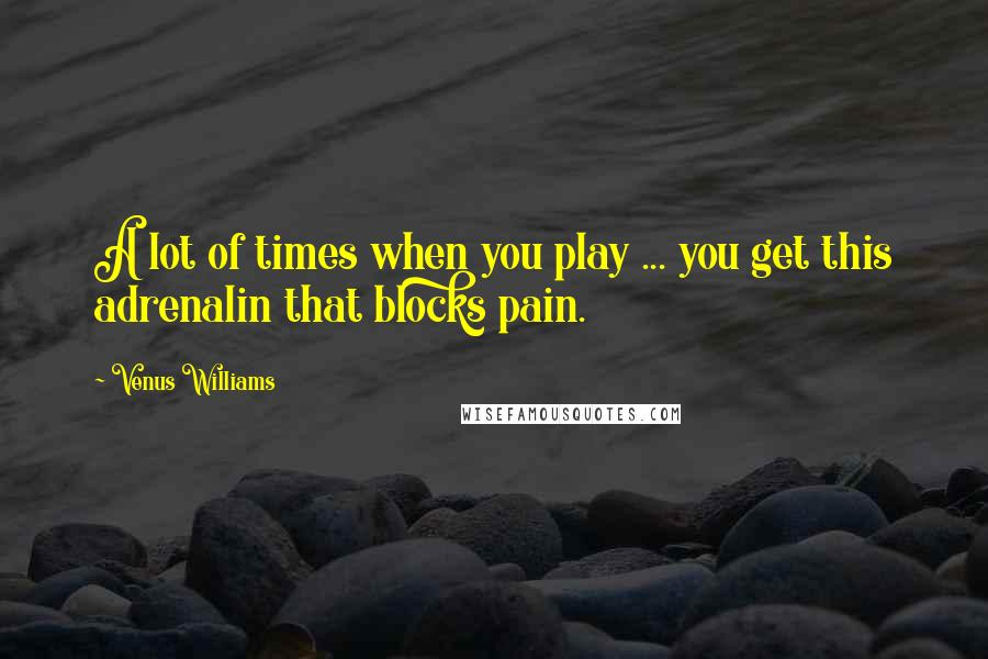 Venus Williams quotes: A lot of times when you play ... you get this adrenalin that blocks pain.