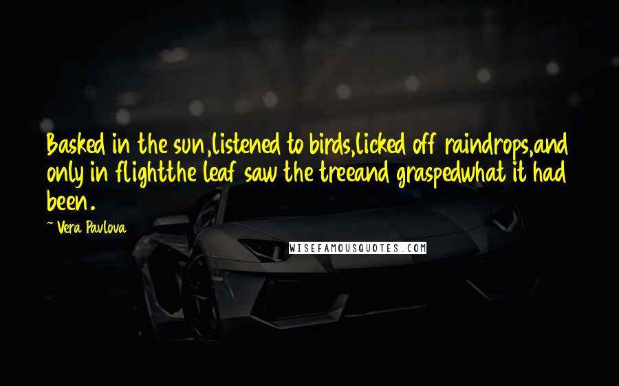 Vera Pavlova quotes: Basked in the sun,listened to birds,licked off raindrops,and only in flightthe leaf saw the treeand graspedwhat it had been.